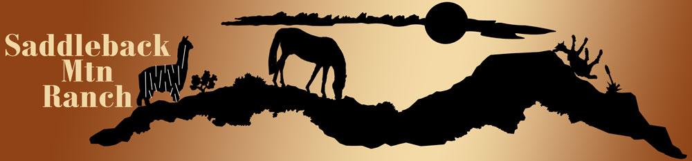 Saddleback Mtn Ranch